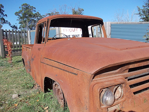 Rusty in Buxton (Photo by Tseen Khoo)